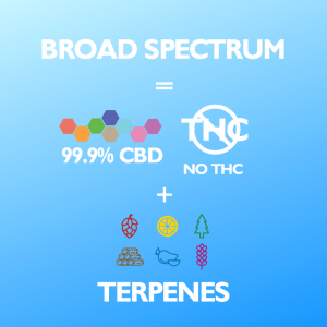BROAD SPECTRUM CBD FOR PETS