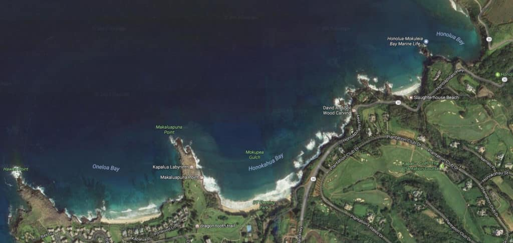 Kapalua-Surf