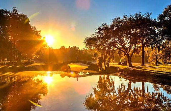 Innisbrook: Resort Golf Model