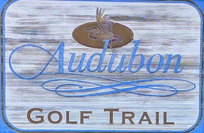 Louisiana's Audubon Trail