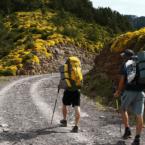 hiking-