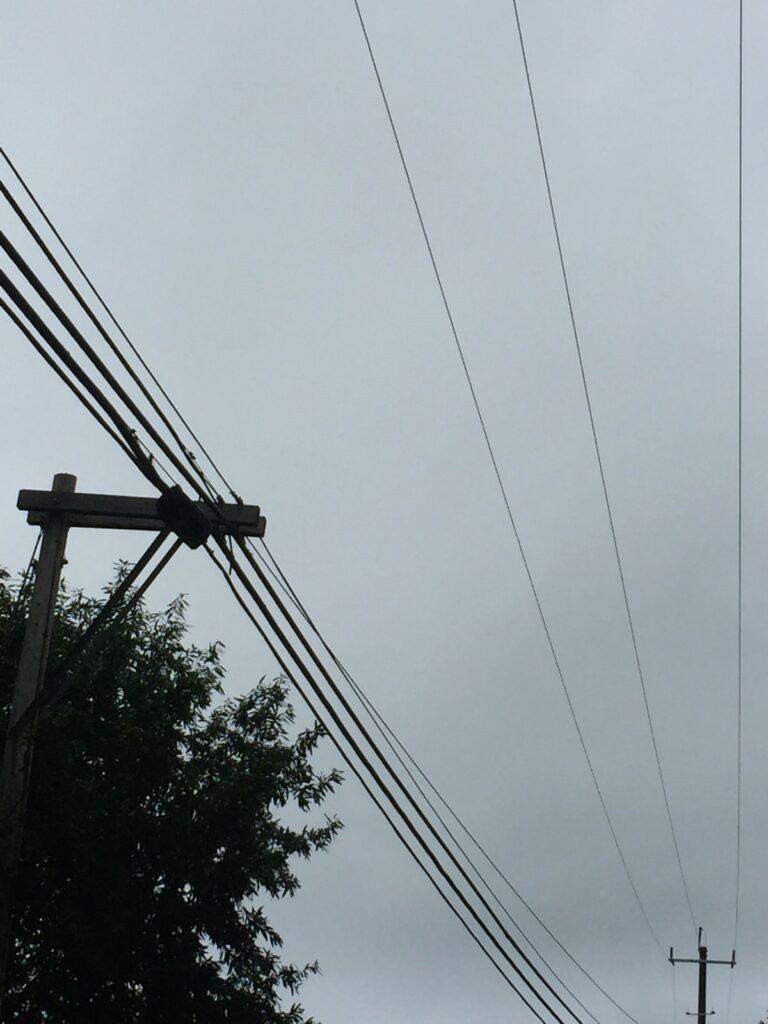 Pole 59, Santa Cruz_003