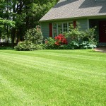 lawn-mowing-lg