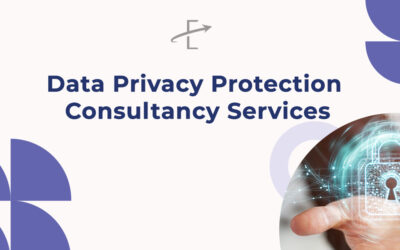 Data Privacy Protection Consultancy Services