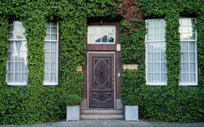 Selecting the Best Doors for Your Miami, FL Home