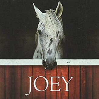 Joey Film