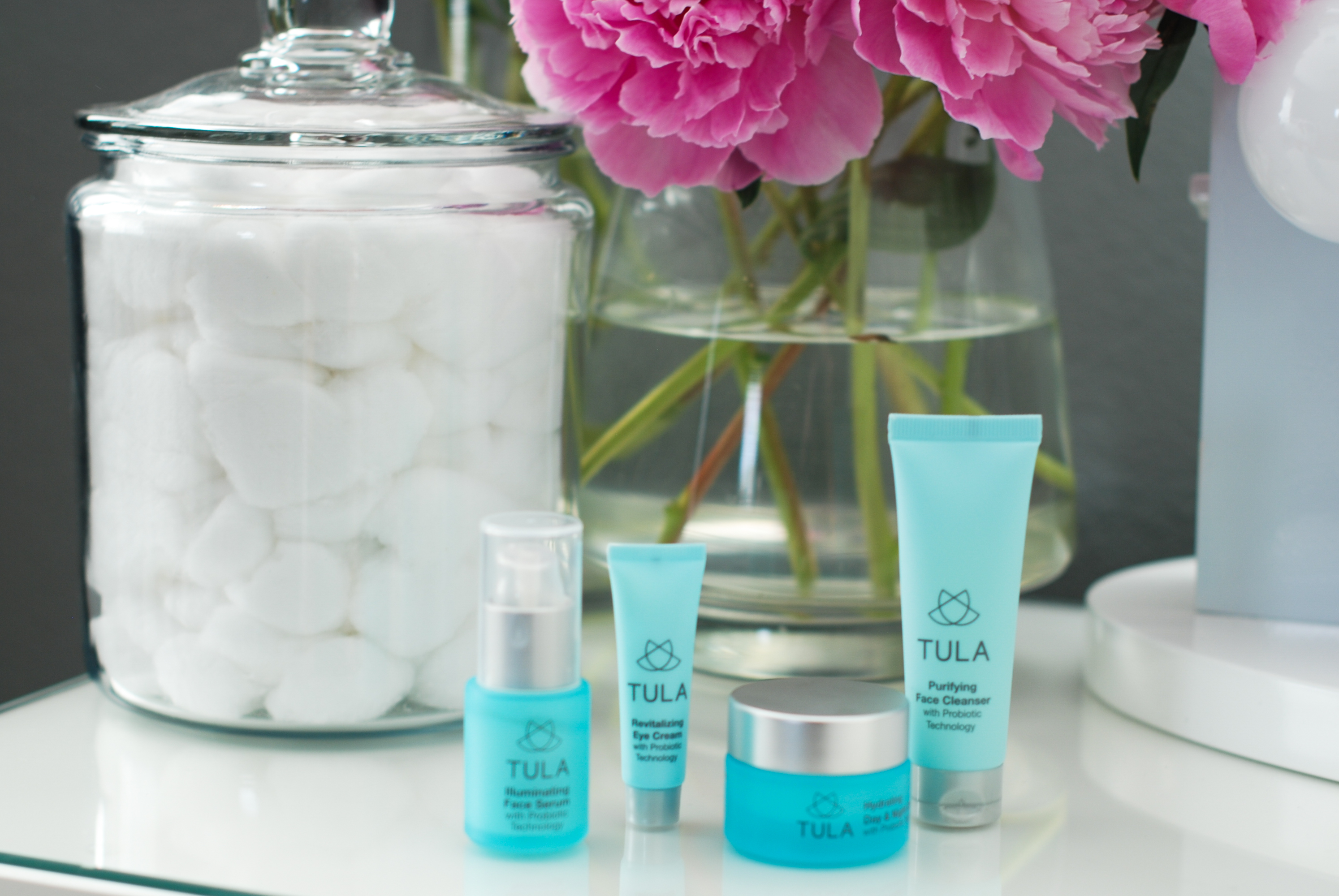 Tula Skincare {Product Review}