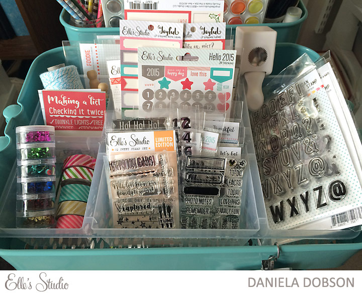 December-Documented-2015-storage-by-Daniela-Dobson