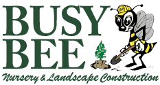 Busy Bee Nursery Logo