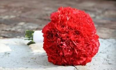 red-carnation-winter-wedding-bouquet