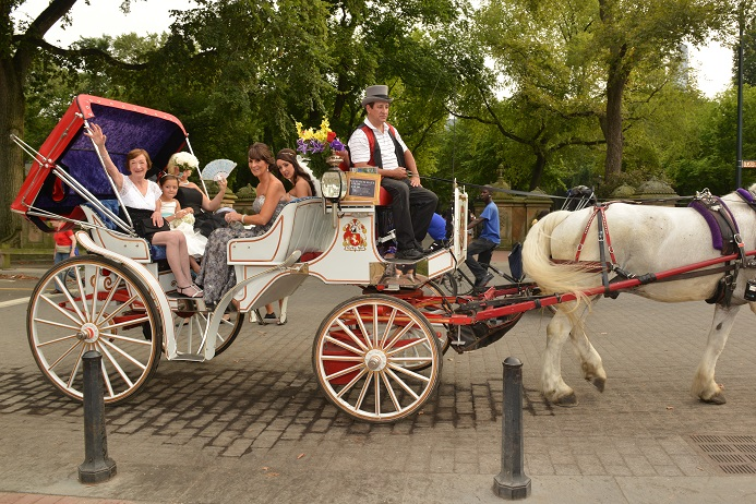 horse-and-carriage-wedding