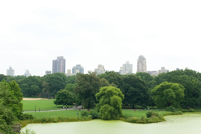 turtle-pond-central-park