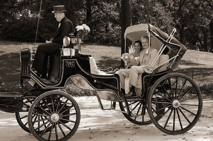 horse-carriage-wedding-central-park