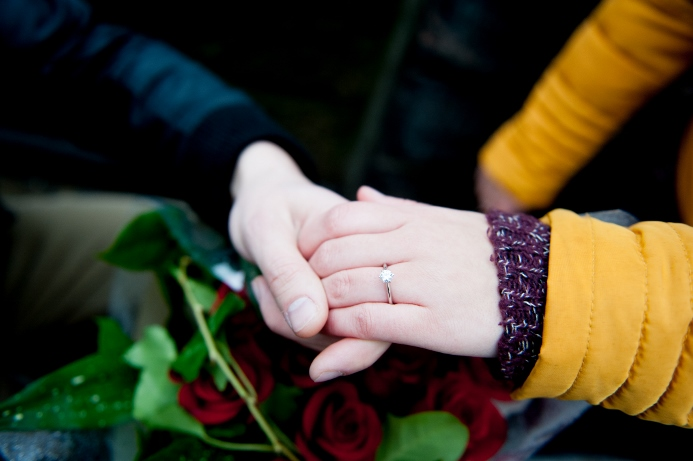 surprise-proposal-at-ladies-pavilion (4)