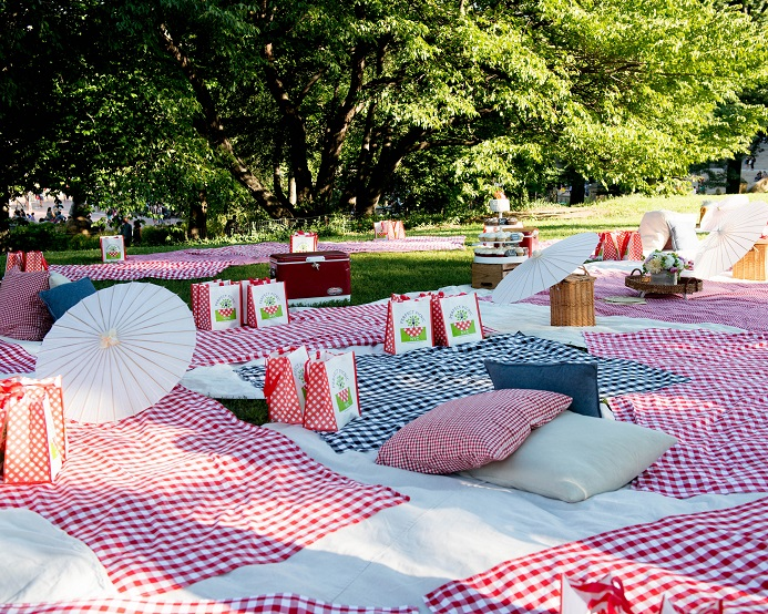 picnic-wedding-reception-cherry-hill (19)