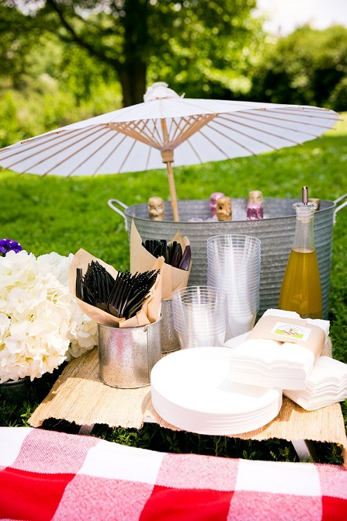 picnic-wedding-central-park-4