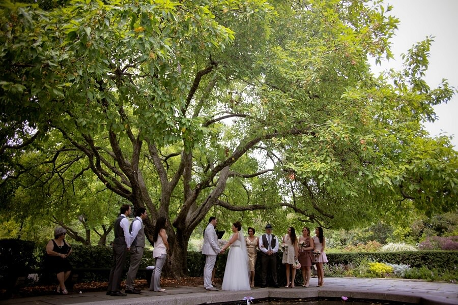 Wide shot of small wedding ceremony under large tree in South Garden