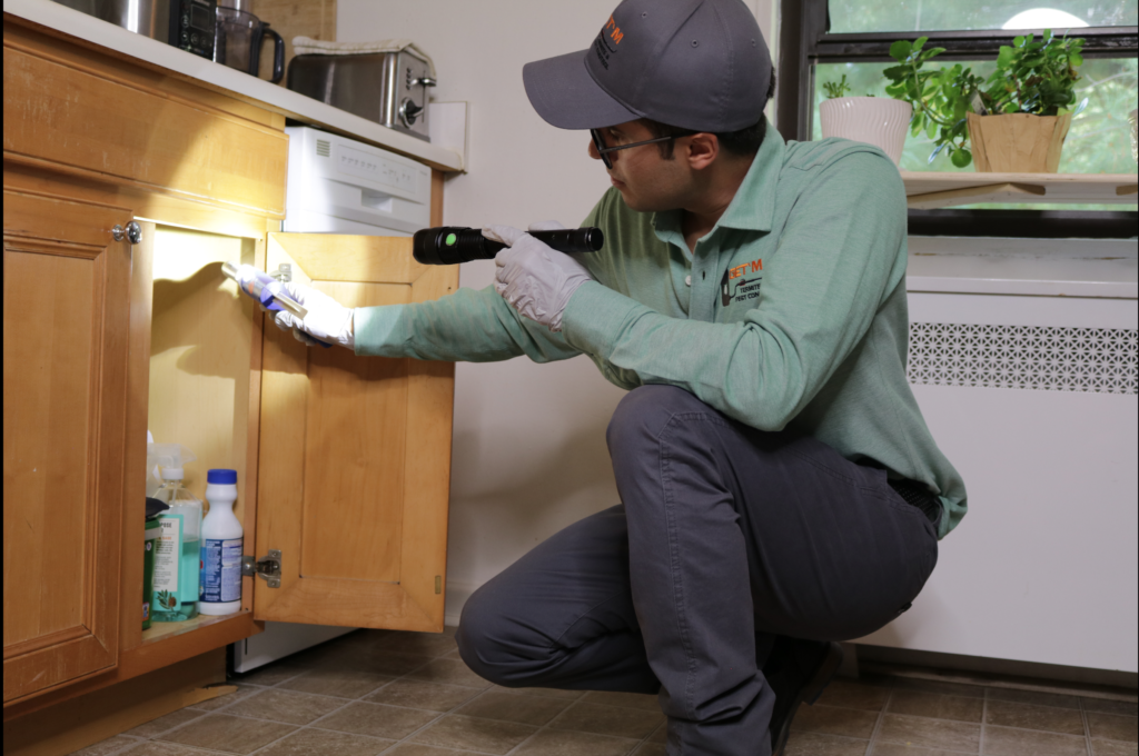 Pest Control Services in NJ