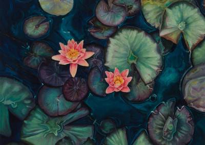 Two Lilies on Pads (Aerial)