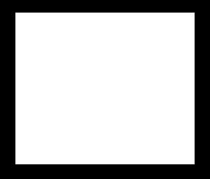San Francisco Optics