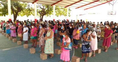 <strong>Sigue Rosalía Benito entregando despensas a familias de San Luis Acatlán</strong>