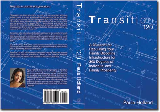 Transition 120 book cover