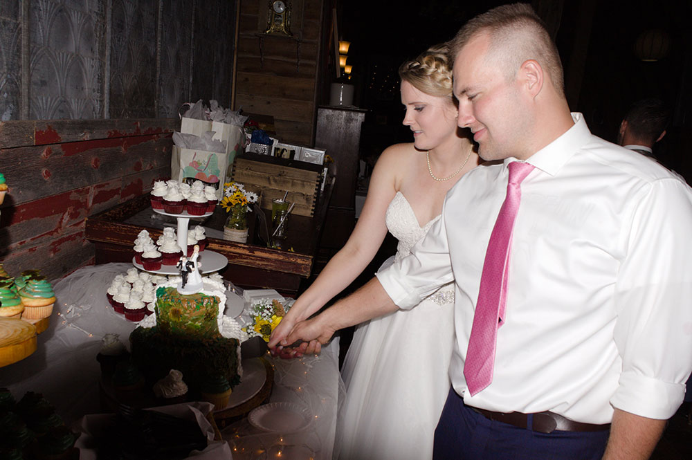 megan adam wedding video