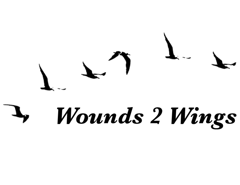 Wounds-to-Wings1