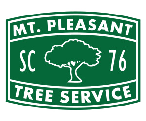 Mount Pleasant Tree Service