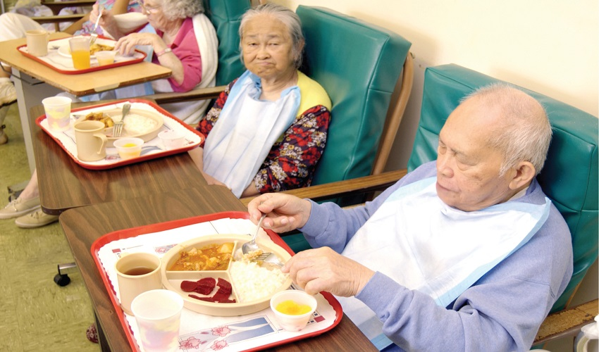 nursing home neglect forced feeding