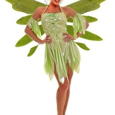 Women's fairy nymph costume
