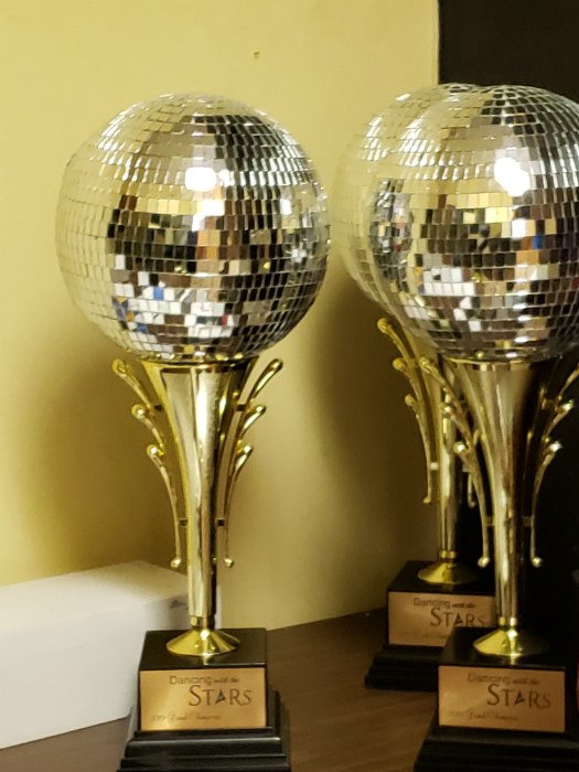 Dancing With The Stars Event Trophies. Our customers love this award and order it each year.