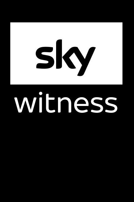 Sky Witness