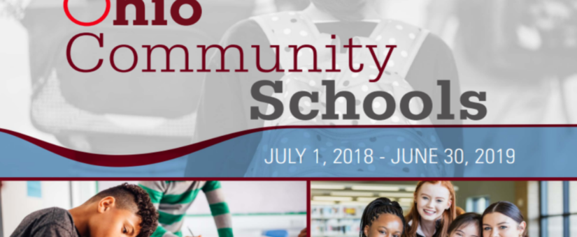 2018-19 Community (Charter) School Report Released