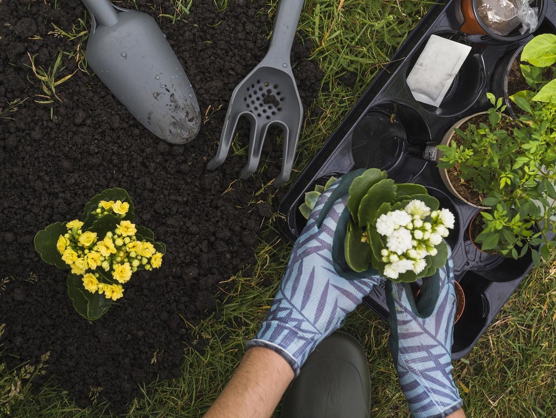 planting-tools-min