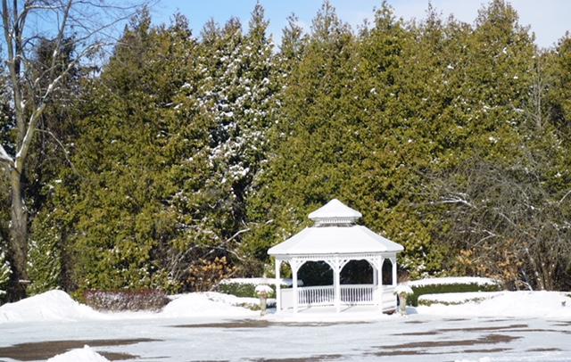 A winter snow scene