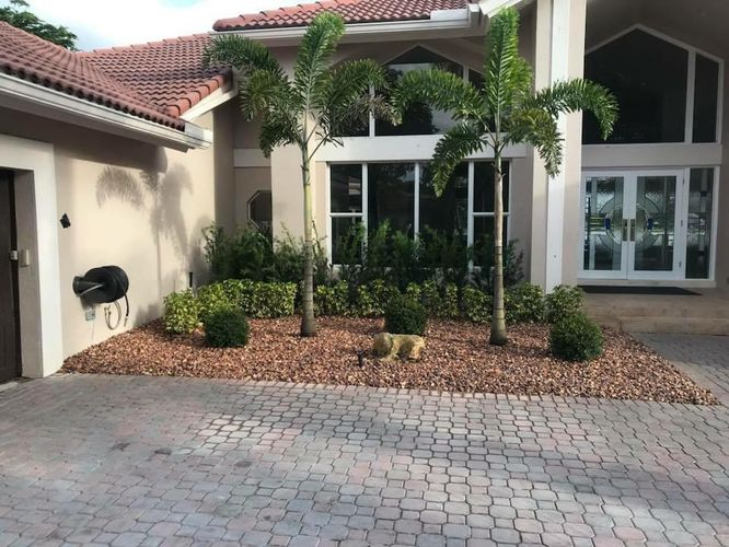 landscaping,Front Yard Plants