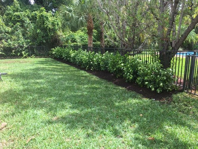 landscaping, Lawn Maintenance