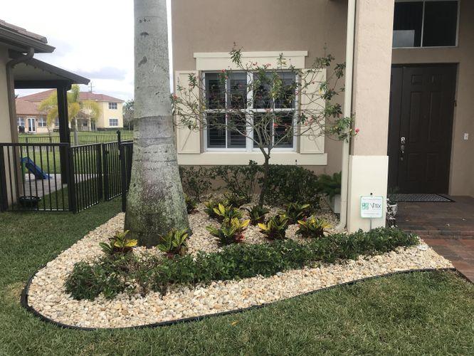 Front Yard Plants