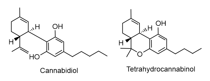 cbd vs thc chemical structure | all of your hemp, CBD, and CBD oil questions answered
