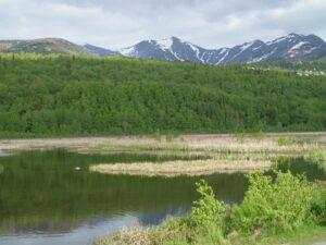 Private Alaska trips