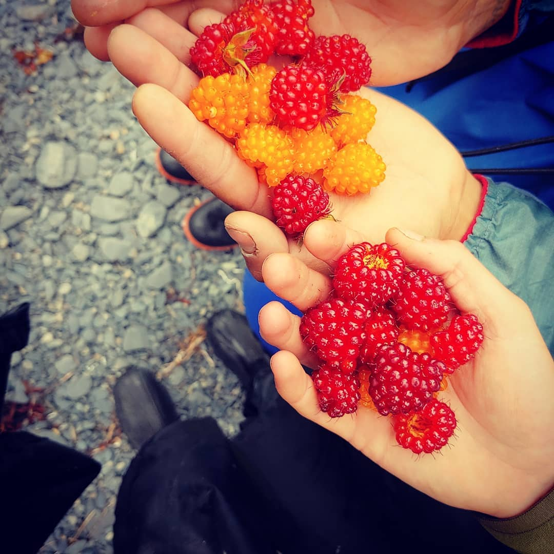 Alaska Food Types