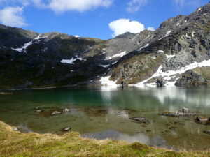 Alpine Views in Alaska