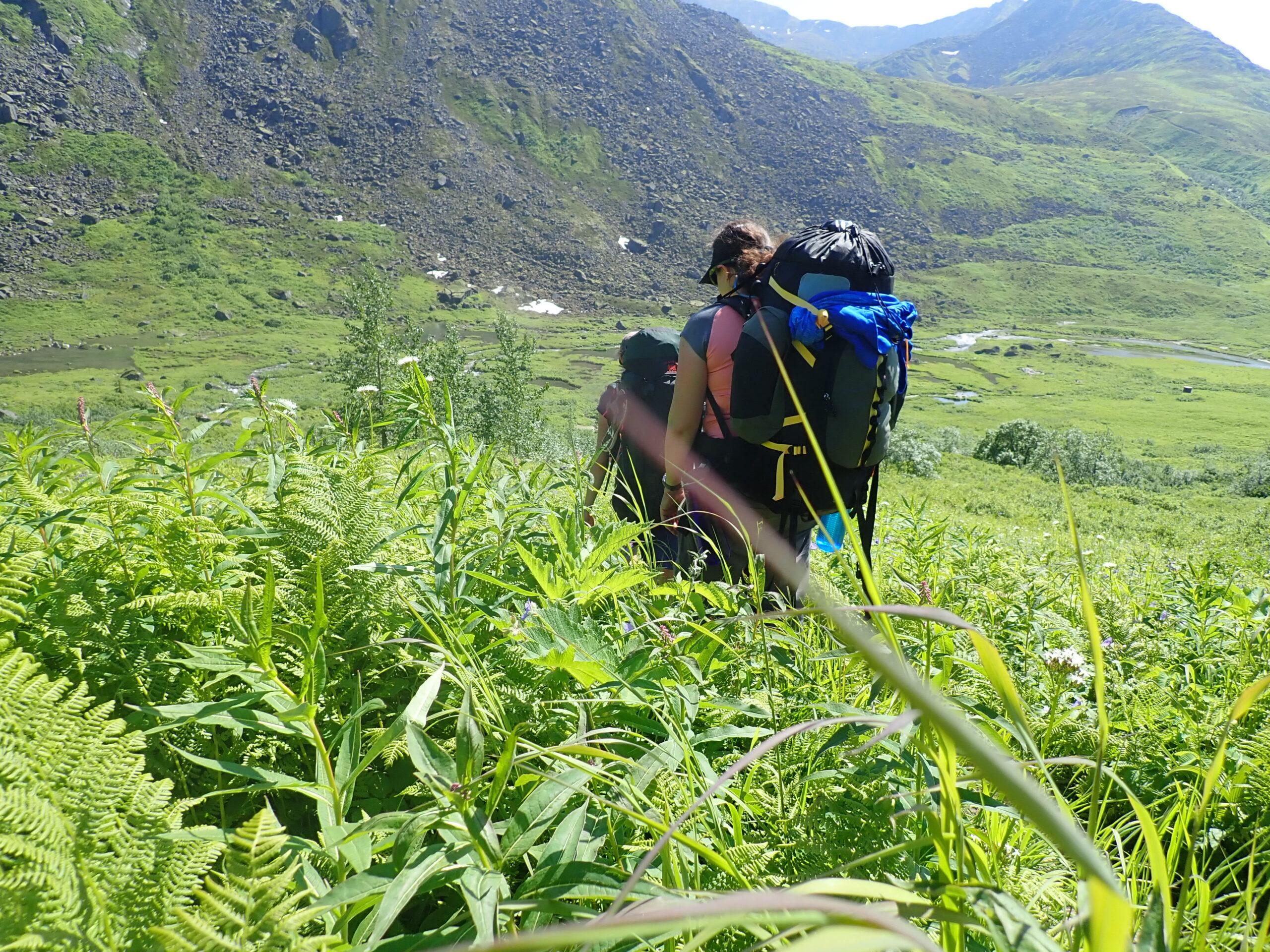 backpackers in green field
