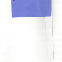 Daneya-Flag.jpg