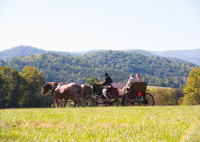 Horse and Carriage, Blue Ridge Mountains