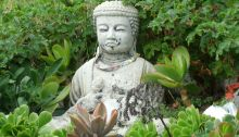 Why meditate, one reason no one talks about….