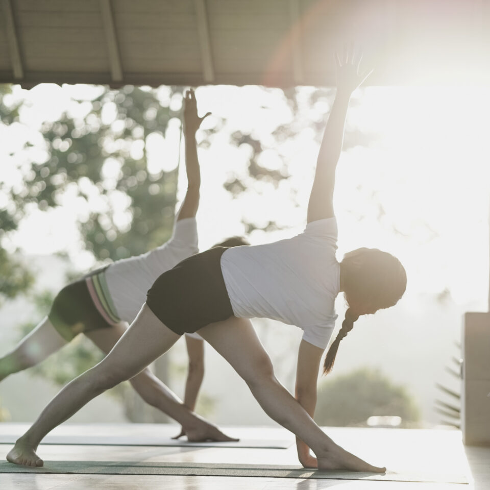 Safe and Methodical Approach to Practice of Yoga