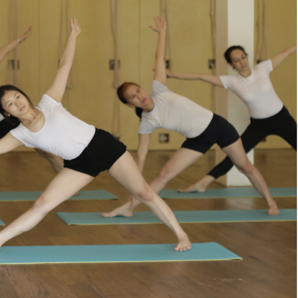 Learn with Certified Iyengar Yoga Teachers