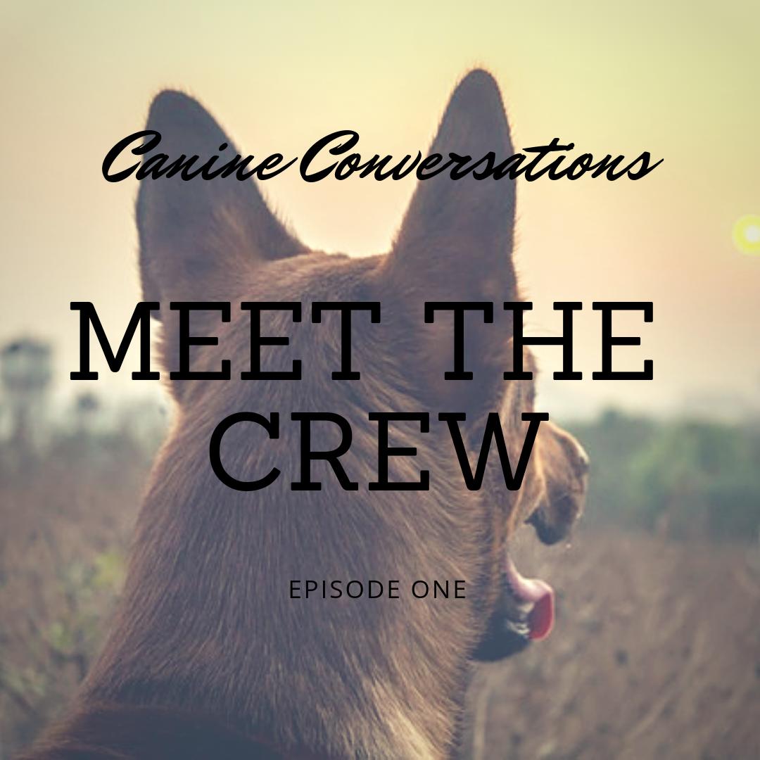 canine conversations dog training podcast episode 1